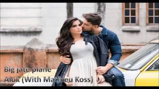 Baixar Big jate plane - Alok & Mathieu koss (tradução)