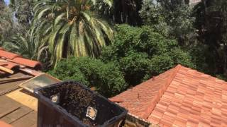 Roof removal Victoria area part 2