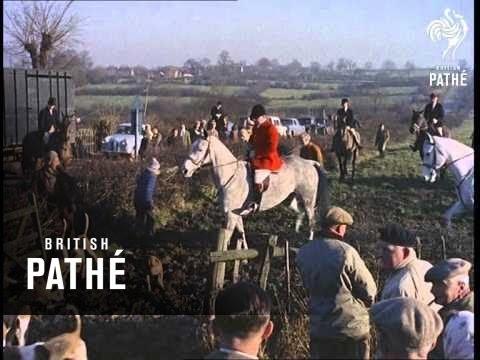 Fox Hunting (1964)