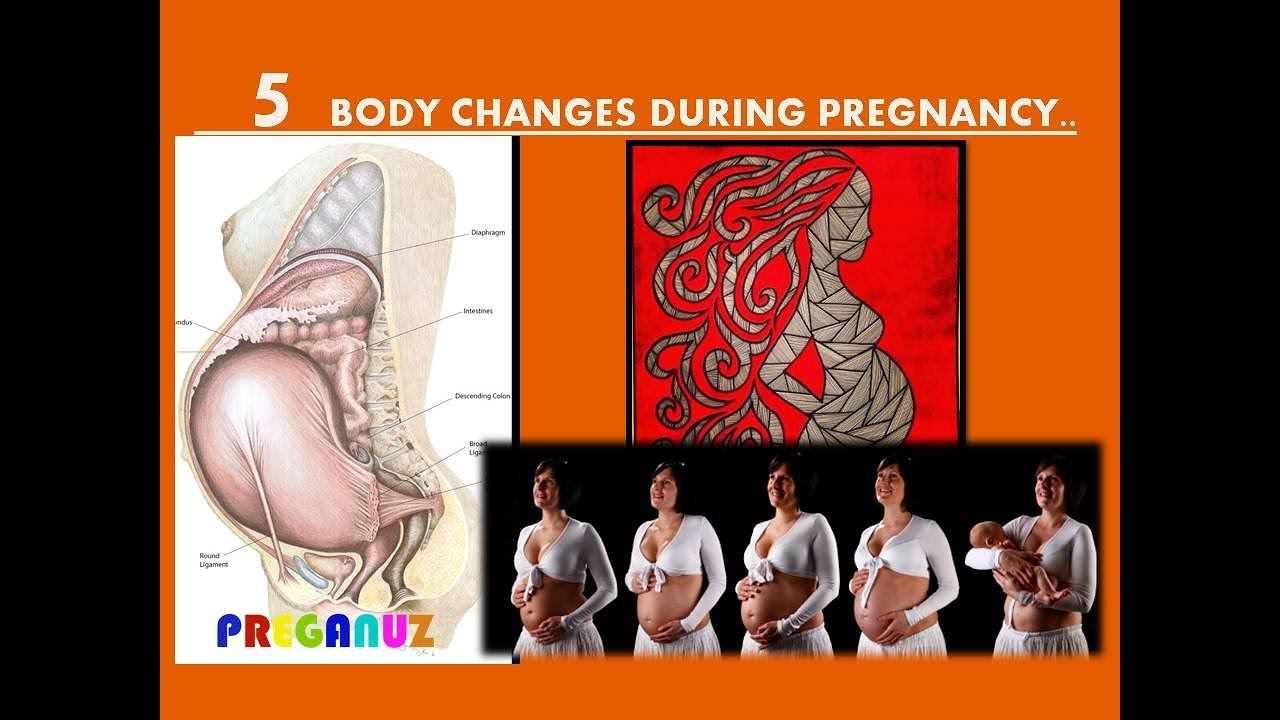 5 BODY CHANGES DURING PREGNANCY.. - YouTube