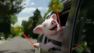 GEICO-Piggy