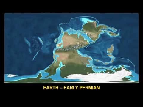 ★ SHARKY: Paleogeology - Precambrian to Present (Rectangular)