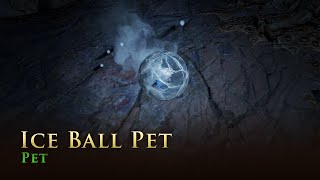 Path of Exile: Ice Ball Pet