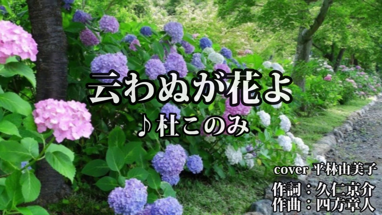 【新曲】云わぬが花よ 杜このみ cover 平林由美子