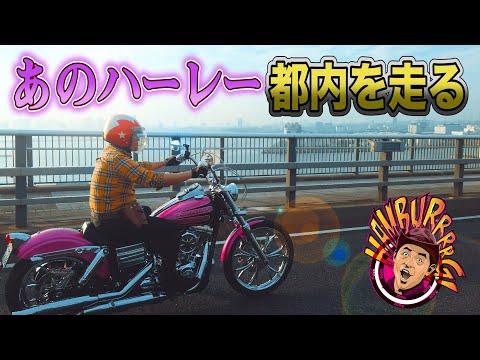 【ハーレー解禁!】チュート徳井に生電話!改めて、このバイクどう?