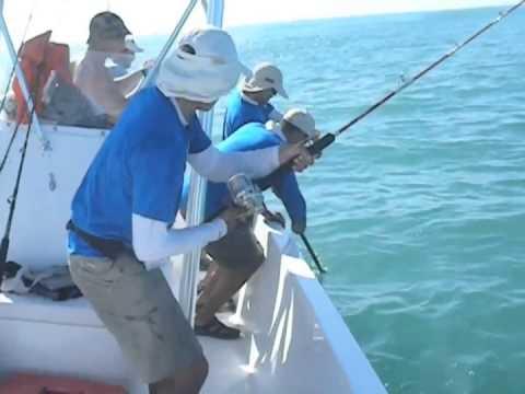 FISH FINDER FRENCH GUYANA TOURNAMENT 1  FISH FINDER