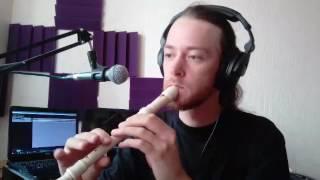 Блокфлейта, уроки онлайн, оркестровая тема - Сергей Сергеевич - Profi-Teacher.ru