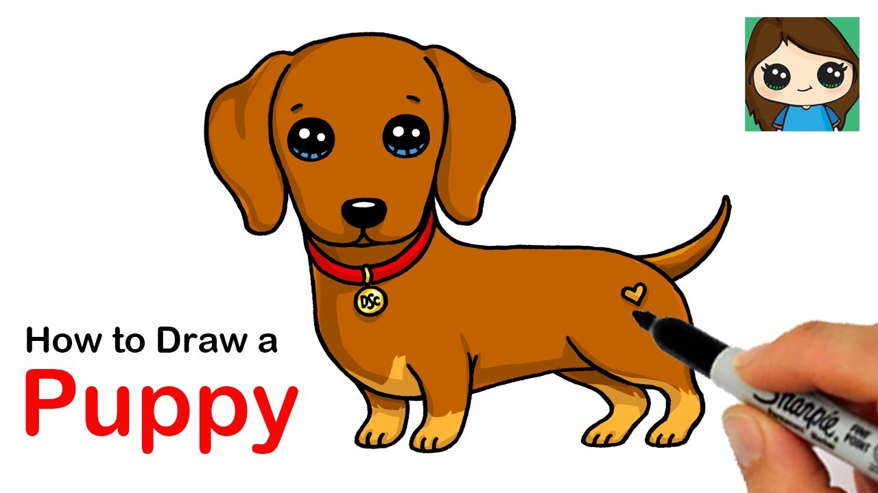 How To Draw A Dachshund Puppy Dog Easy Youtube