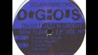 Jazz N Groove - House Vibe No.1 - 1994