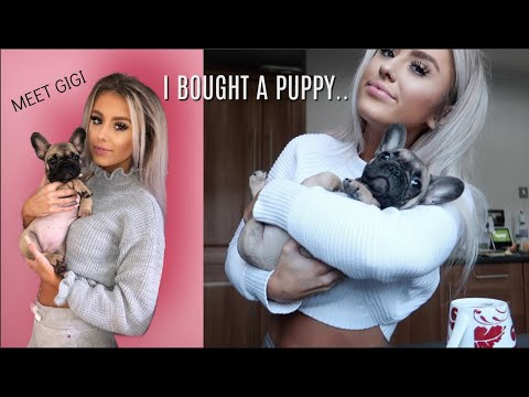 GETTING OUR DREAM PUPPY | FIRST DAY WITH GIGI