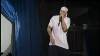 Eminem-Without Me (live)