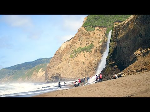 Alamere Falls Trail - Point Reyes California
