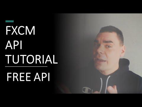 free-forex-web-sockets-api-tutorial-!