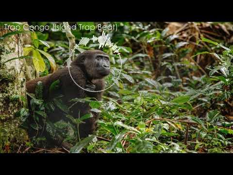 Trap Congo Island Trap Beat