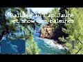 Voir MP - Marche Cap Jaune & show de baleines, La Réunion DJI Mavic Pro