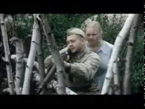 Csonkin videó letöltése