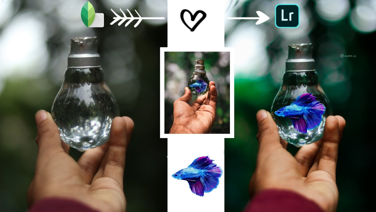 New Mobile Photography Tricks 2020 | New Creative Mobile Photography 2020 | New Snapseed Editing |