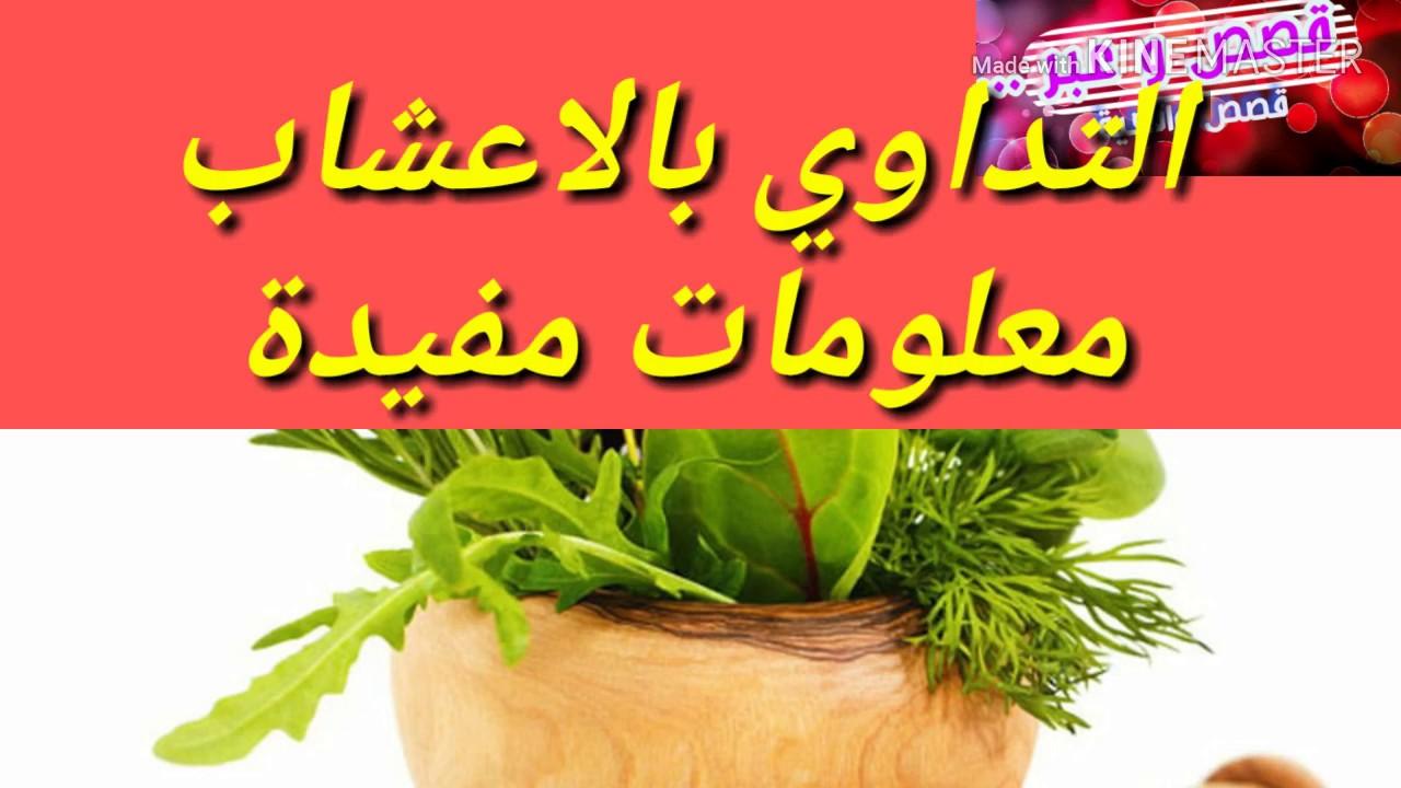 معلومات مهمة و مفيدة للتداوي بالأعشاب