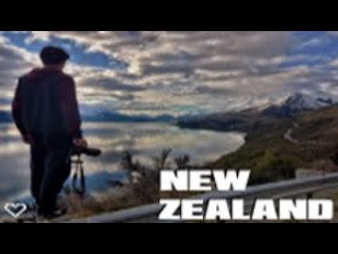 The Best New Zealand Road Trip! - Project: New Zealand (Vlog Series Trailer)