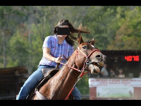 Why Horses Attract Bullies - Working A Horse With No Halter, Bit, or Pain