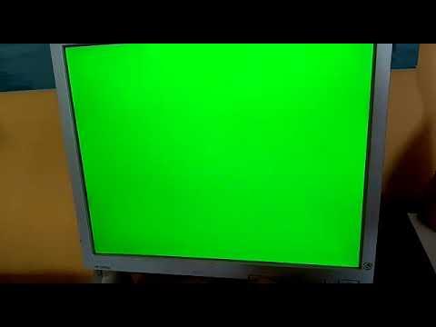 LCD HP L1950g