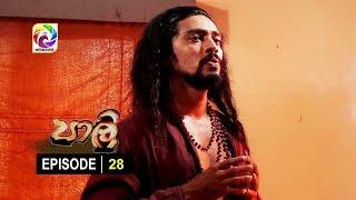 පාලි | Paali Episode 28 |  සතියේ දිනවල  රාත්රී 10.00 ට.. Thumbnail