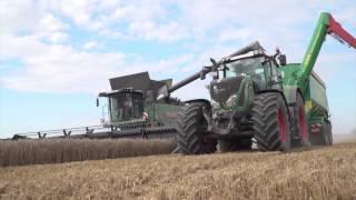 Erntezeit auf Rügen: Ein Marktfruchtbetrieb mit 1.800 Hektar