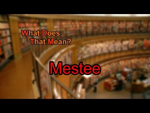 What does Mestee mean?
