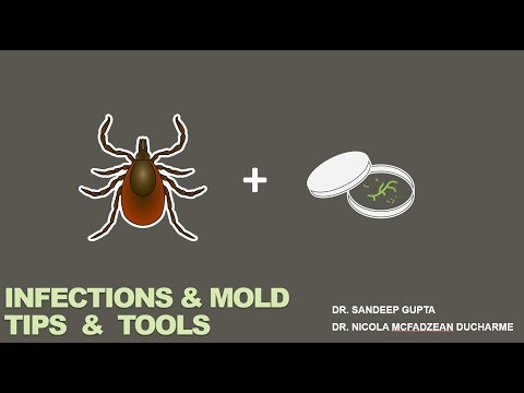 Chronic Infections & Mold Illness - Tips & Tools with Dr. Nicola Ducharme