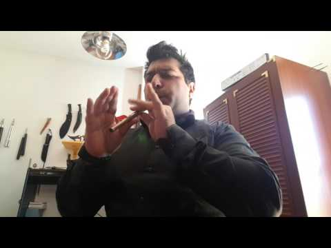 Gallaeci Dominion - IMPRESSIVE SUPER EPIC MUSIC! - tin whistle cover