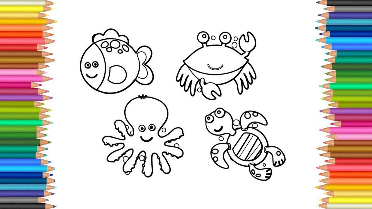 Mewarnai Gambar Kartun Hewan Ikan Cumi Cumi Kepiting Kura Kura Youtube