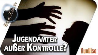 Jugendämter außer Kontrolle - Heiner Schmitt bei SteinZeit