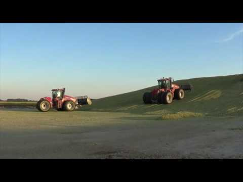 Chopping Corn Silage near London Ohio