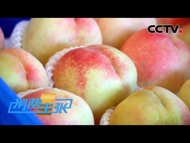 绵软多汁PK爽脆清甜,仙桃大比拼,你最爱哪种?「消费主张」20210723 | CCTV财经