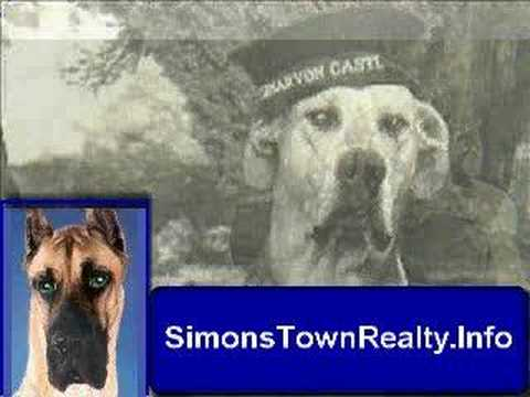 Simonstown Royal Navy Enlist Dog Just Nuisance Youtube