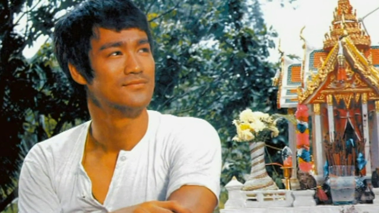 a biography and life work of bruce lee a chinese born american actor and martial artist 1993) was an american actor and martial artist he was the only son of martial artist and actor bruce lee brandon lee what his philosophy in life.