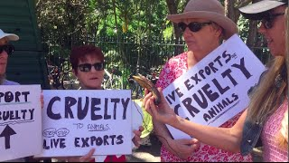 Meat eaters protest against animal cruelty Street Talk #3