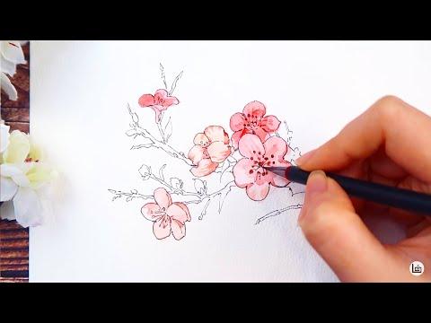 [ Họa cụ Lỗ Store ] Hướng dẫn vẽ hoa cổ trang cơ bản   Watercolor Tutorial   How to draw flower