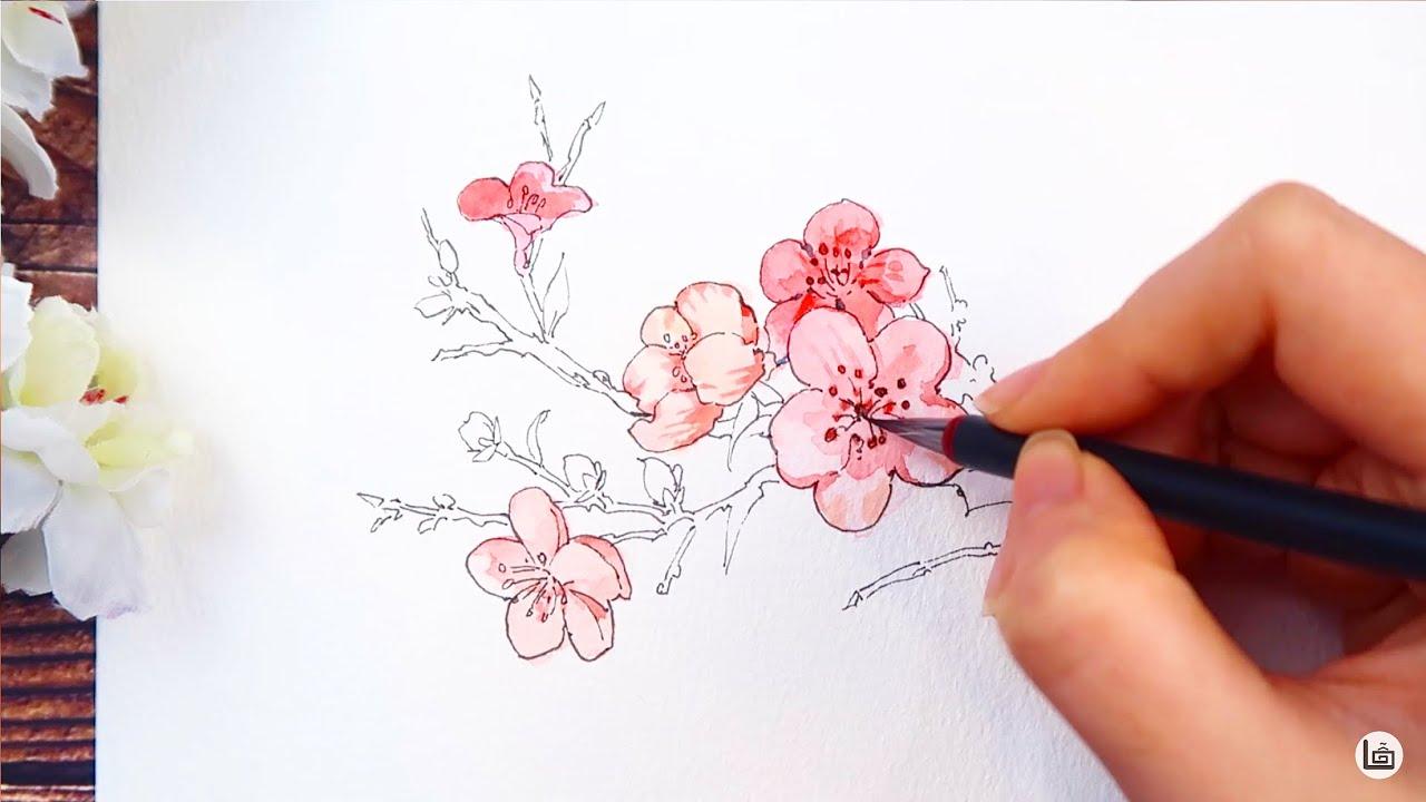 Hướng dẫn vẽ 3 loại hoa cơ bản trong tranh cổ trang | Watercolor Tutorial | How to draw flower
