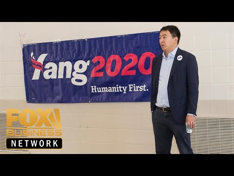 Andrew Yang's call for universal basic income gains momentum