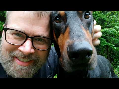 How do dogs tell time? Doberman Pinscher Vlog - Happy Dog and Life