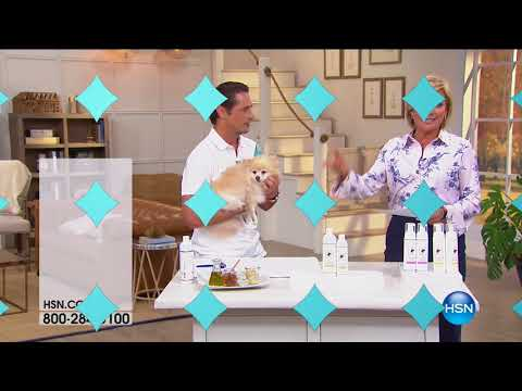 HSN | Pet Solutions featuring Royal Treatment 15th Anniversary 08.17.2017 - 03 PM
