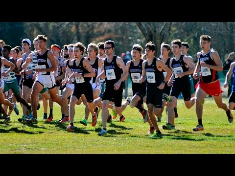 2015 NAIA Cross Country Championship