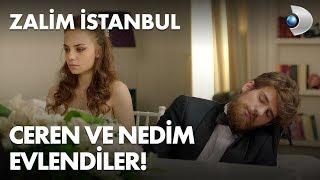 Ceren ve Nedim evlendi! Zalim İstanbul 8. Bölüm