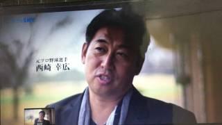 引退されてもかっこいい西崎投手 西崎莉麻 検索動画 22