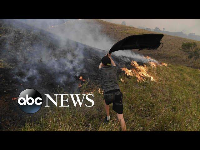Australia fires, Venice floods, impeachment hearings: World in Photos, Nov. 14, 2019