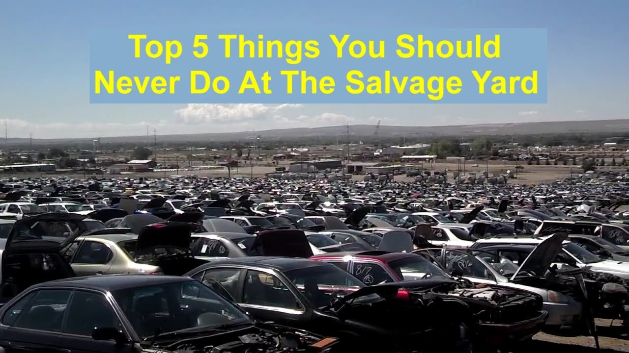 Top 5 things that you should avoid doing at the salvage junk yard ...