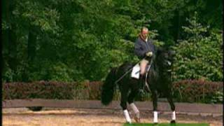 Dressage-H Rehbein & Donnerwetter at home