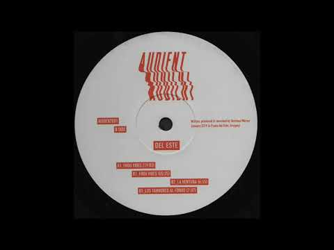 B1. Audient - Frox Vibes [AUDIENT001]