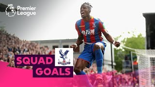 Incredible Crystal Palace Goals | Zaha, Milivojevic, Townsend | Squad Goals